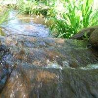 Waterfall FPS