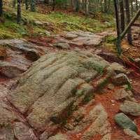Bedrock Trail