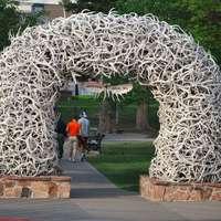 Elk Arch