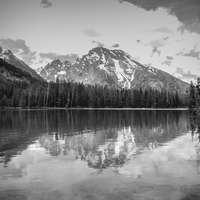 Reflection 7