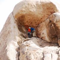 Resting Climbers