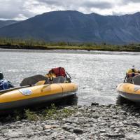 Bear & Kayaks