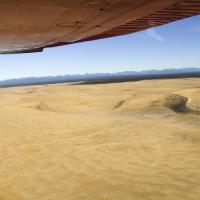 Swirling Dunes